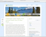 wordpress custom theme website development for Abundant Tomorrow