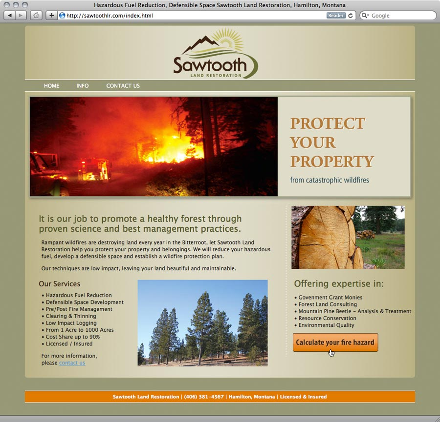 screenshot of website design for Sawtooth Land Restoration
